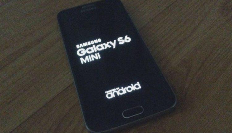 Samsung Galaxy S6 mini photos leak out