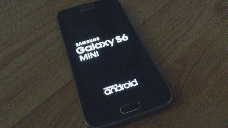 Samsung Galaxy S6 mini photos leak out