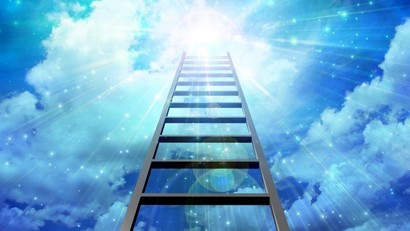 بالا رفتن از نردبان موفقیت ممکن است، فقط کافیست بخواهید