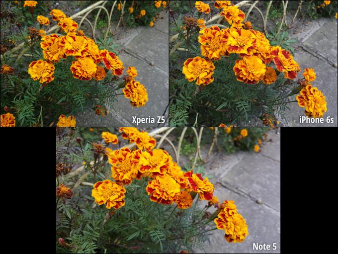 مقایسه دوربین گلکسی نوت 5، آیفون 6 اس و اکسپریا زد 5 پریمیوم