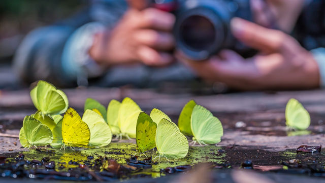 photography-reasons-perspective
