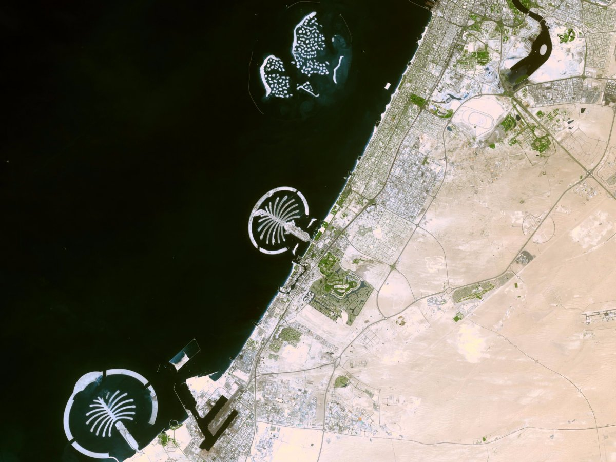 جزیره های نخل از فضا
