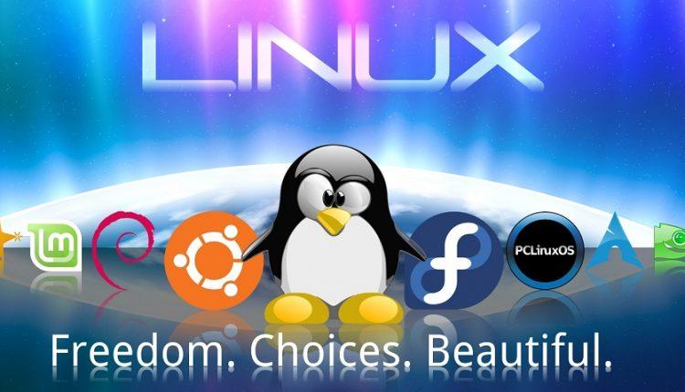 امروز از دریچه تاریخ: سیستم عامل لینوکس متولد شد