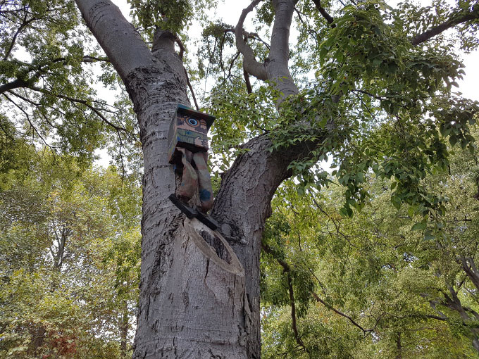 خانه پرنده در بالای درخت گلکسی اس 7 اج