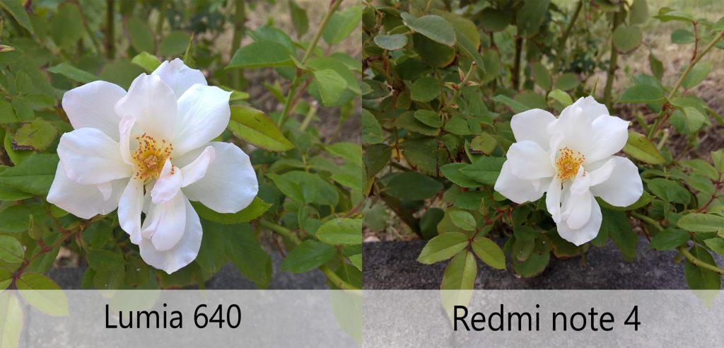 مقایسه دوربین لومیا 640 با ردمی نوت 4