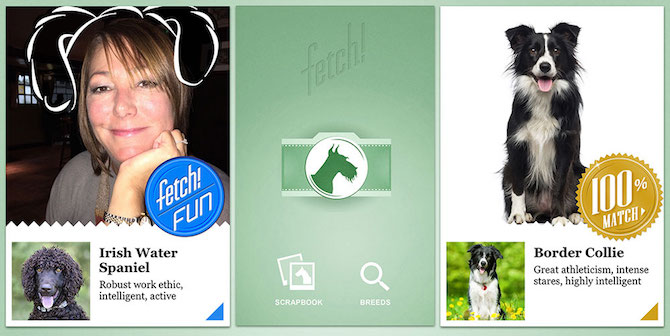 microsoft-apps-what-dog-fetch