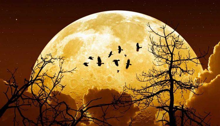 چگونه از ماه افروختگی عکس بگیریم