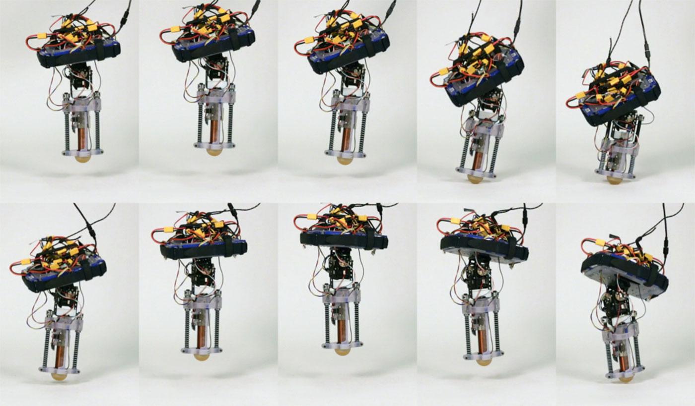tigger-robot