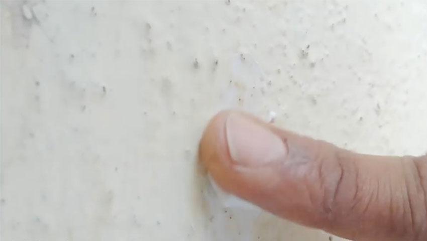 ترفندهای جالب خمیر دندان (تصویر 29)