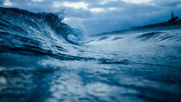 دیجی قلم؛ سفر به دنیای ناشناخته اقیانوس ها
