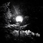تصاویر سیاه و سفید هواوی پی 9 (تصویر 1)