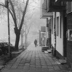 تصاویر سیاه و سفید هواوی پی 9 (تصویر 2)