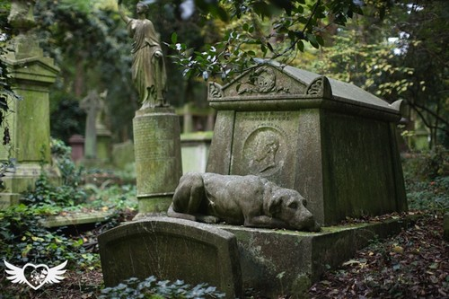 با ترسناک ترین قبرستان های دنیا آشنا شوید!