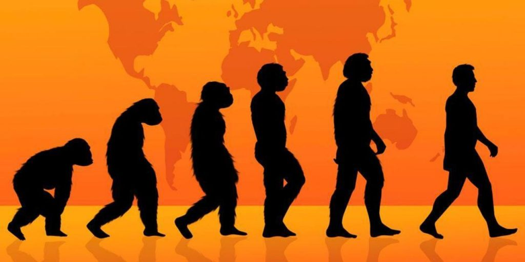 تئوری شماره ۱، دیگر تکاملی در کار نخواهد بود