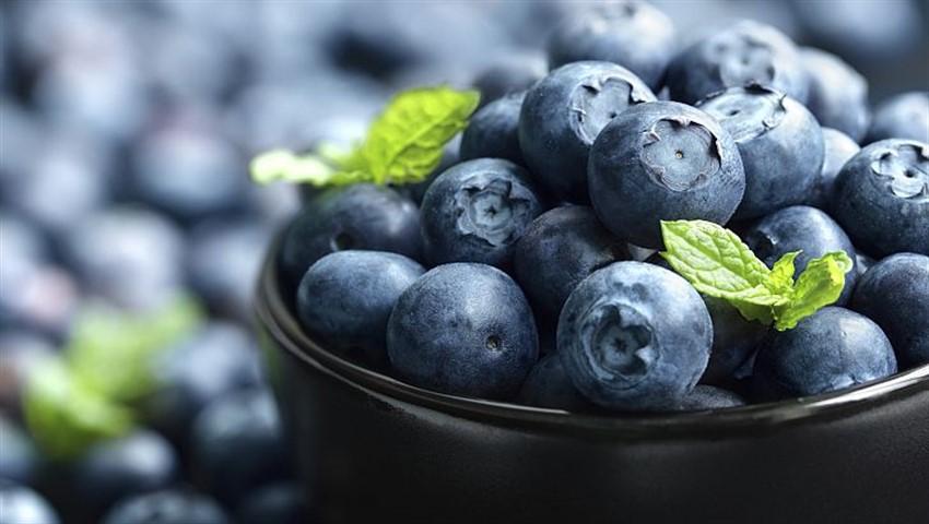 تاپ10: با ۱۰ مادهی غذایی که به تیز ماندن حافظه کمک میکنند آشنا شوید