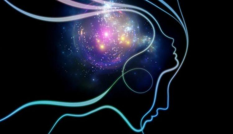 دیجی فکت: 16 دانستنی دربارهی ذهن