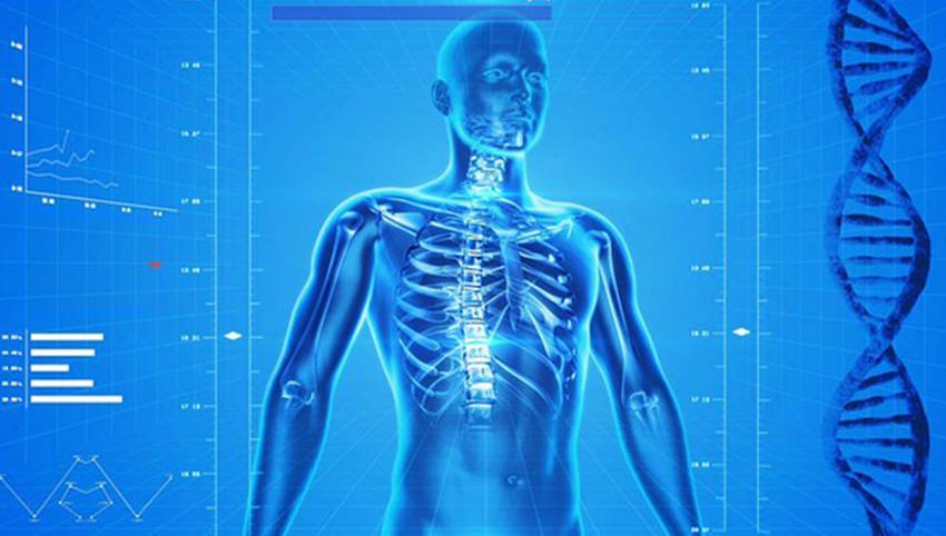 با حقایقی شگفت انگیز درباره بدن انسان آشنا شوید