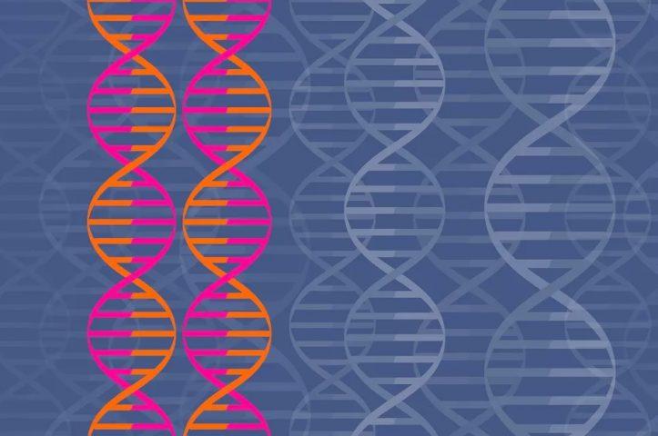 کودکانی با ژنهایی اصلاح شده