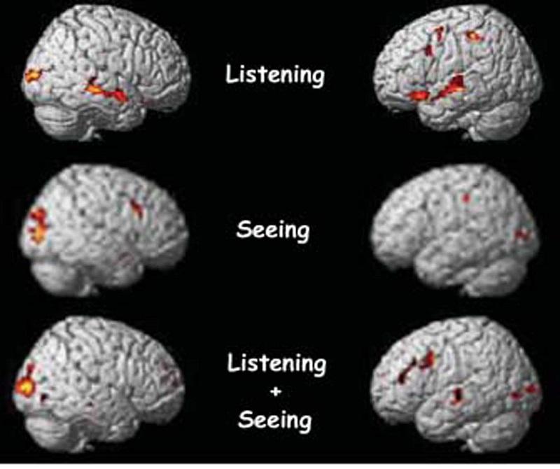 تاثیر مخرب اینترنت، اینترنت چه اثری روی مغز شما دارد؟