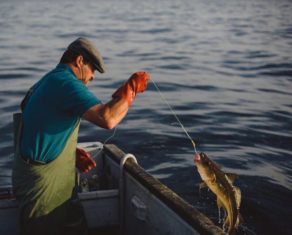 ماهیگیری، مشاغل ناسالم و مضر