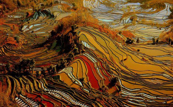 مکانهای دیدنی جهان: شهرستان یوانیانگ
