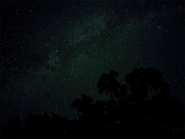 نمونه عکس دوربین پیکسل 4