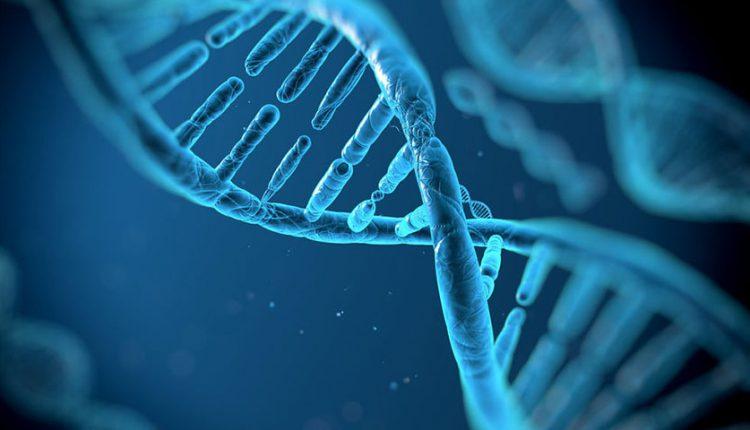 رایانه مبتنی بر DNA