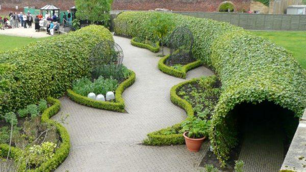 باغ سمی انگلستان