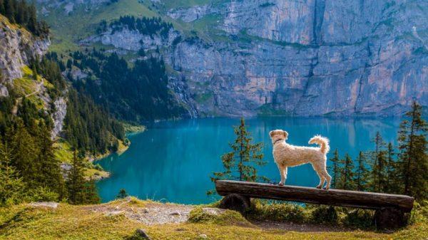 7 هزار دریاچه در سوئیس