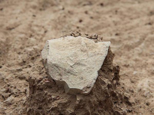 ابزار سنگی