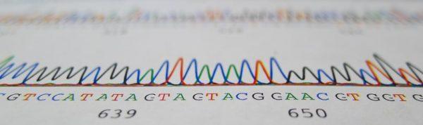 14 دانستنی جالب در مورد DNA پروژه ژنوم