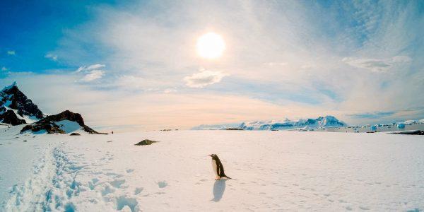 با 7 مکان عجیب و کاوش نشده زمین آشنا شوید Antarctica