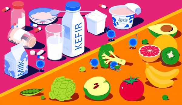 سیستم ایمنی بدن چیست و چگونه کار میکند؟ 4
