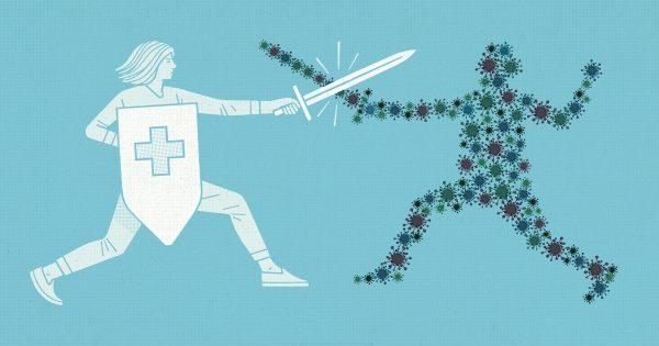 سیستم ایمنی بدن چیست و چگونه کار میکند؟ 2