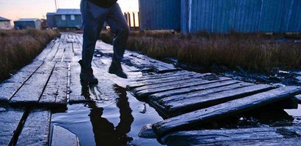 15 حقیقت جالب و شنیدنی در مورد آلاسکا 5