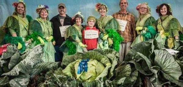 15 حقیقت جالب و شنیدنی در مورد آلاسکا 11