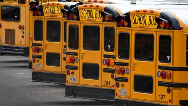 12 حقیقت شگفت انگیز در مورد اتوبوس 2