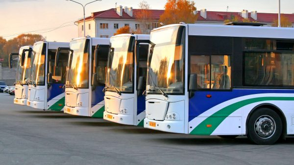 12 حقیقت شگفت انگیز در مورد اتوبوس 3